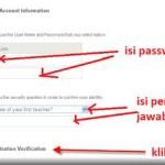 gambar-form-account-irformation-payoneer