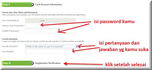 gambar form account irformation payoneer