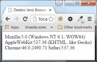 Tampilan Data Cek User Agent di Browser